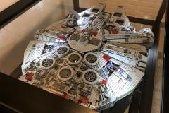 Falcon Display Case 4