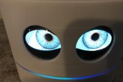 2.-Closeup