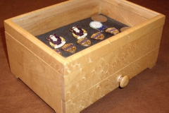 Display Box 1